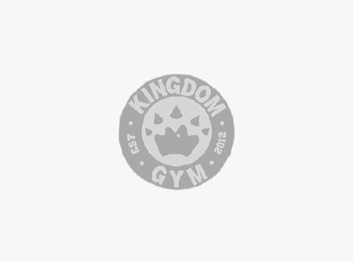 kingdom gym sydney client logo